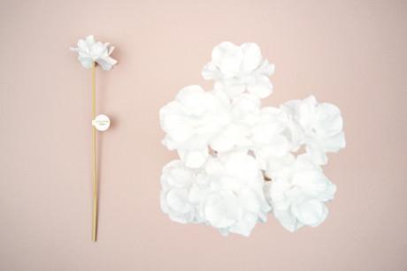 Fleurs parfumables Chloé