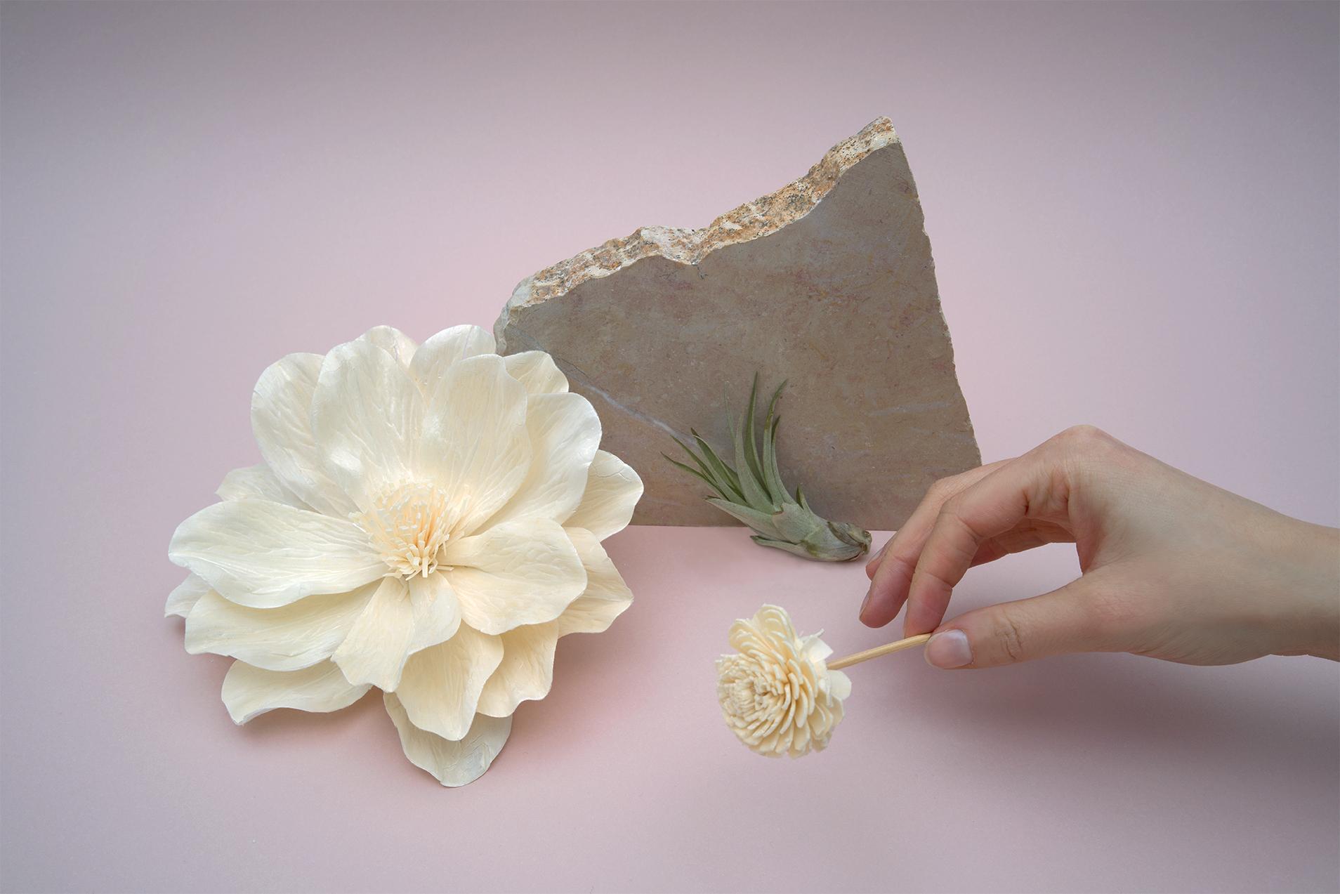 Les Petites Mouillettes : Fleurs biodégradables façonnées à la main